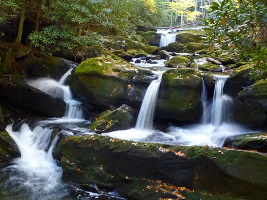 Cascades along Lynn Camp Prong